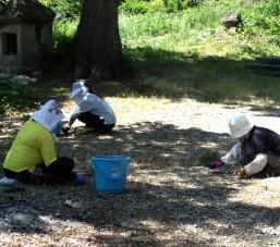 愛宕神社境内廻りの草むしり作業